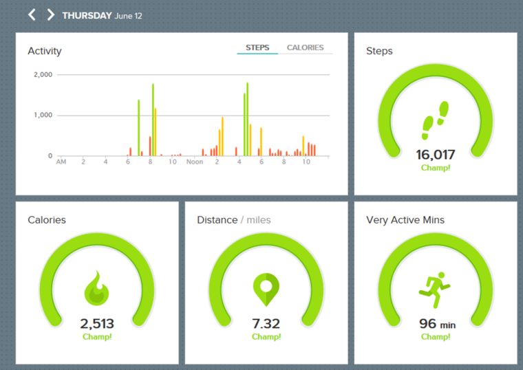Fit Bit Dashboard